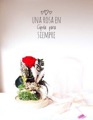 Cúpula Red Rose