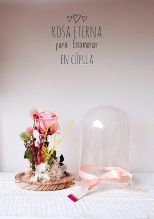 Cúpula Pink Rose